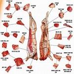 Tipe potongan daging