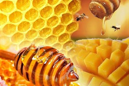 Madu Lebah Menu