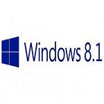 Win 8.1 Pro Logo