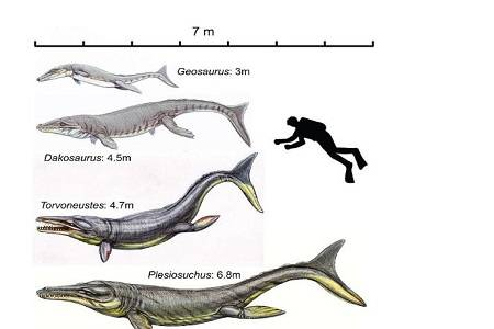 T-Rex Laut Ilustrasi